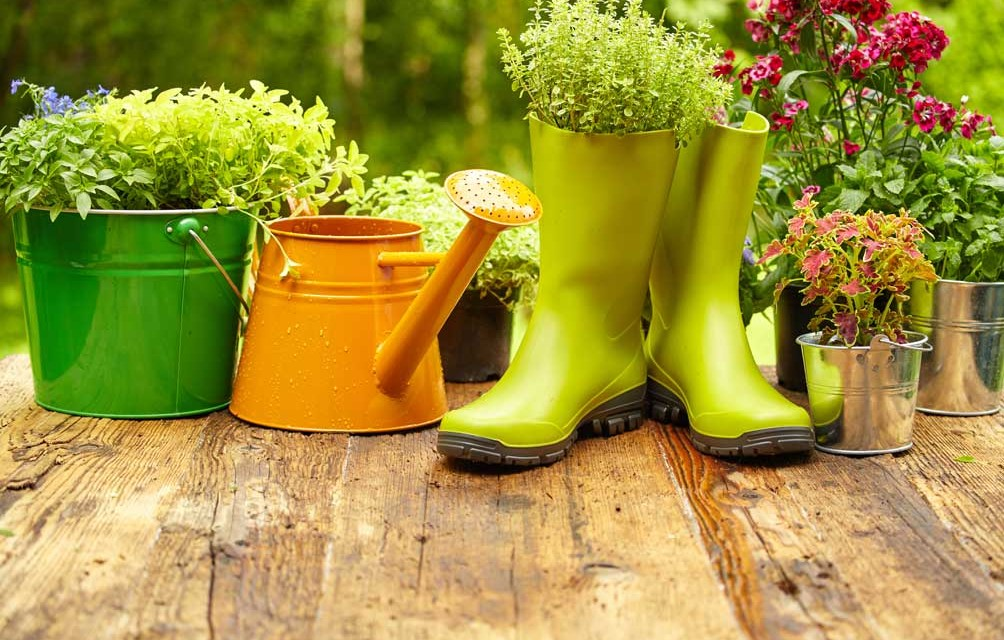 5 Cheap Ways to Improve Your Garden This Summer