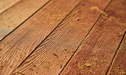 Why Does Timber Still Beat Wood-Effect Tiles?