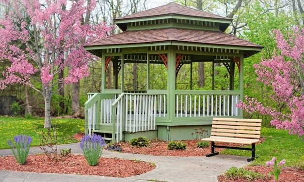 3 Reasons you need a timber gazebo